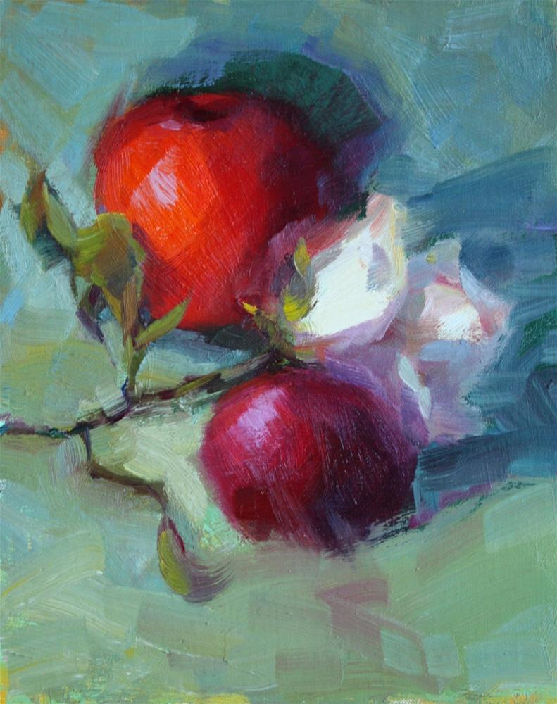 """Apple & White Rose"" original fine art by Carol Myer"