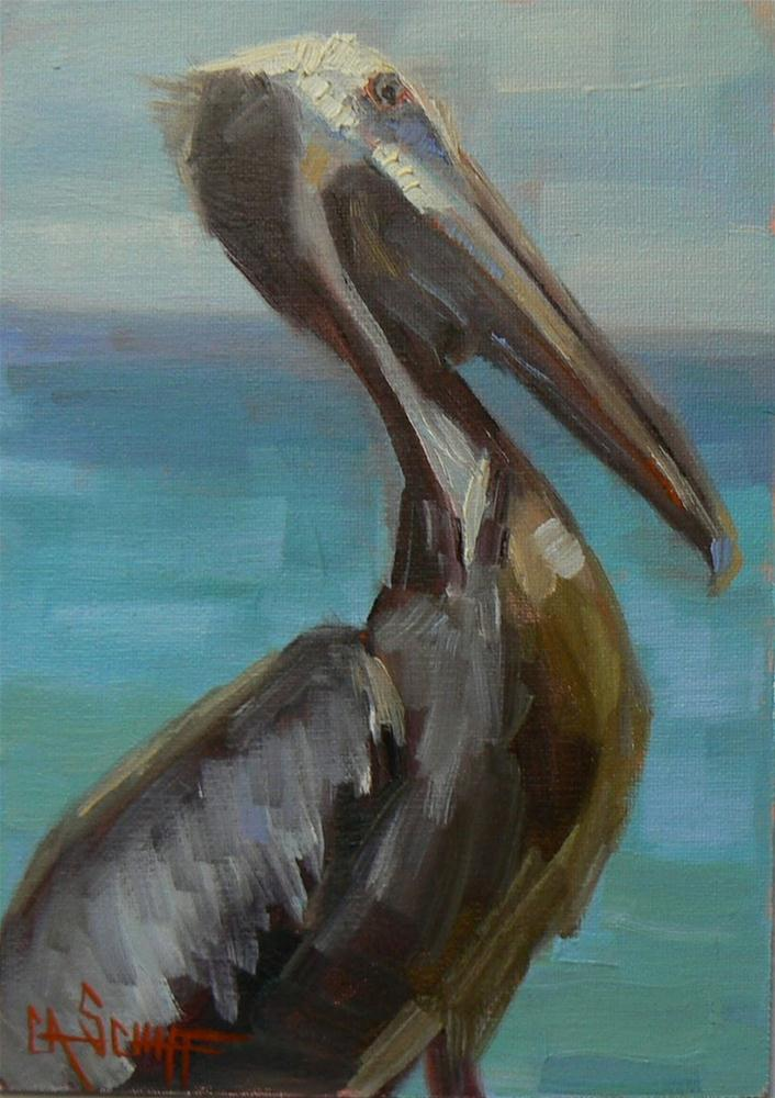 """Daily Painting, Original Oil, Pelican Portrait 8x6"" original fine art by Carol Schiff"