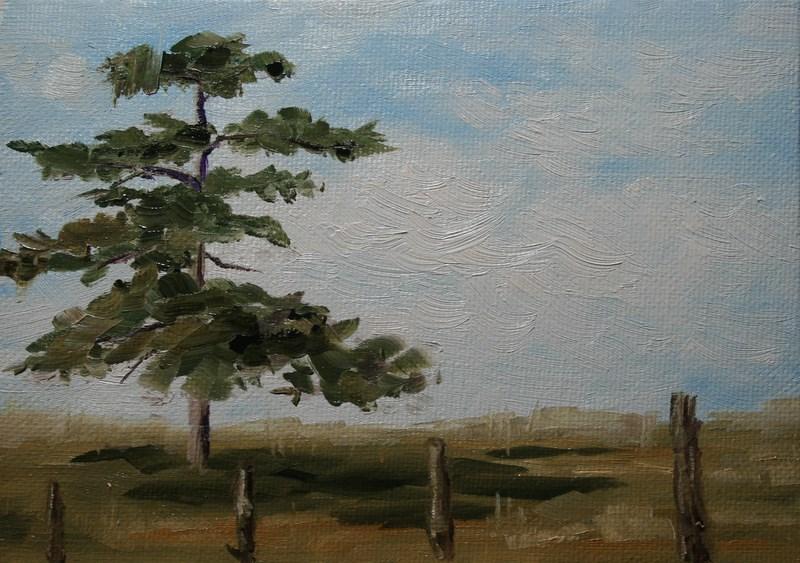 """""""Lone Pine"""" original fine art by Jean Nelson"""