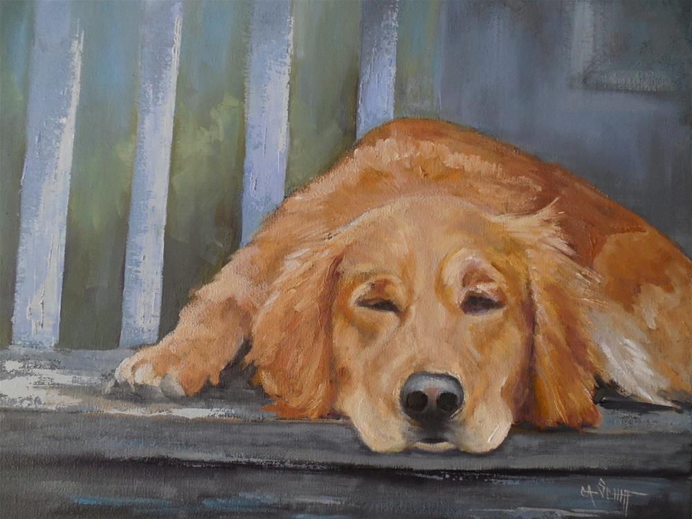 """Dog Portrait, Daily Painting, Ruby's Nap. 16x20x1.5 Oil on Canvas, SOLD"" original fine art by Carol Schiff"
