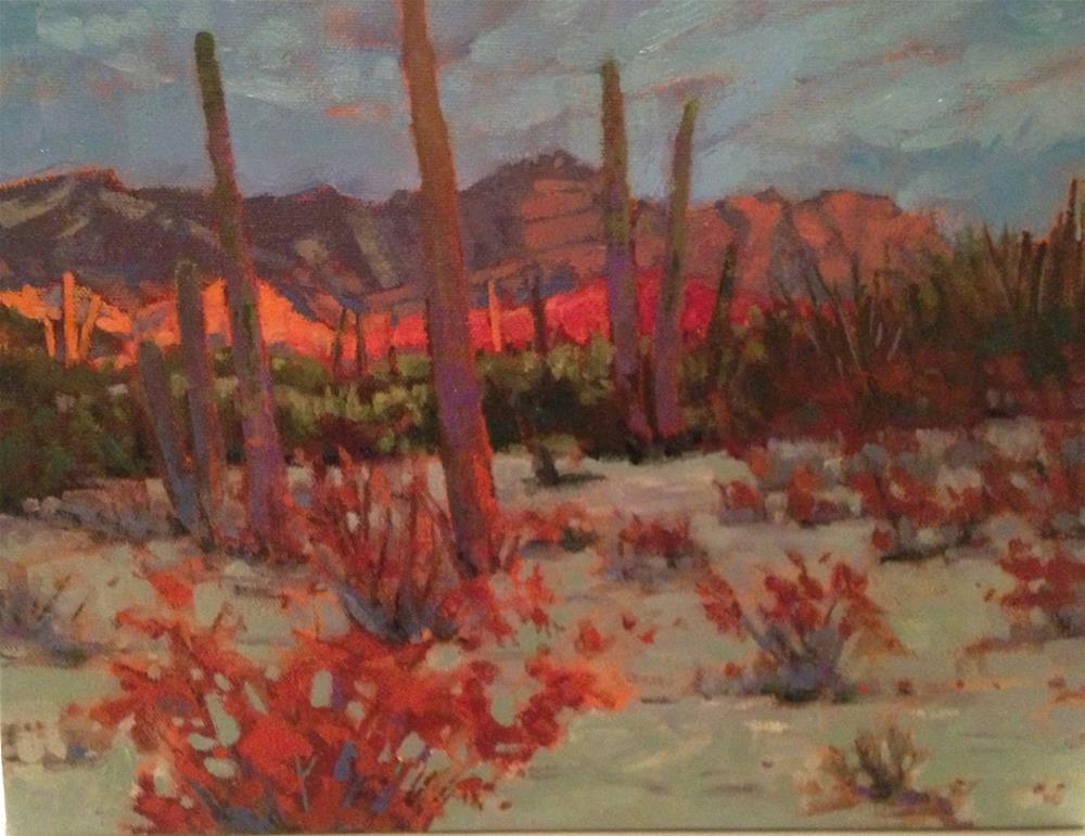 """Sonoran Sunrise"" original fine art by Krista Eaton"