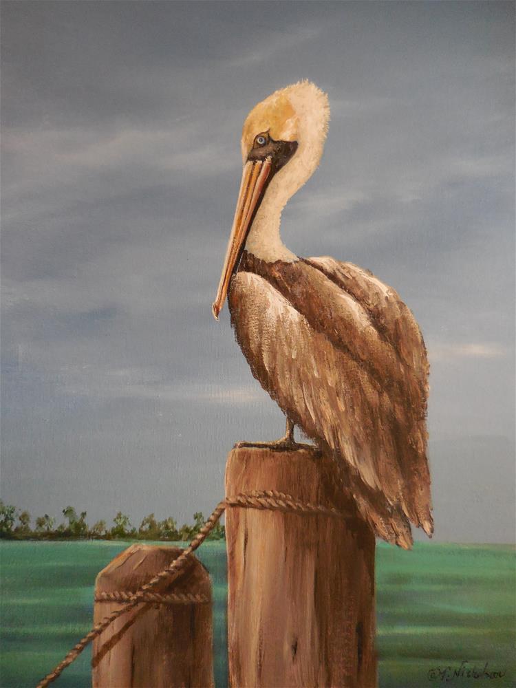 """Pelican"" original fine art by Terri Nicholson"