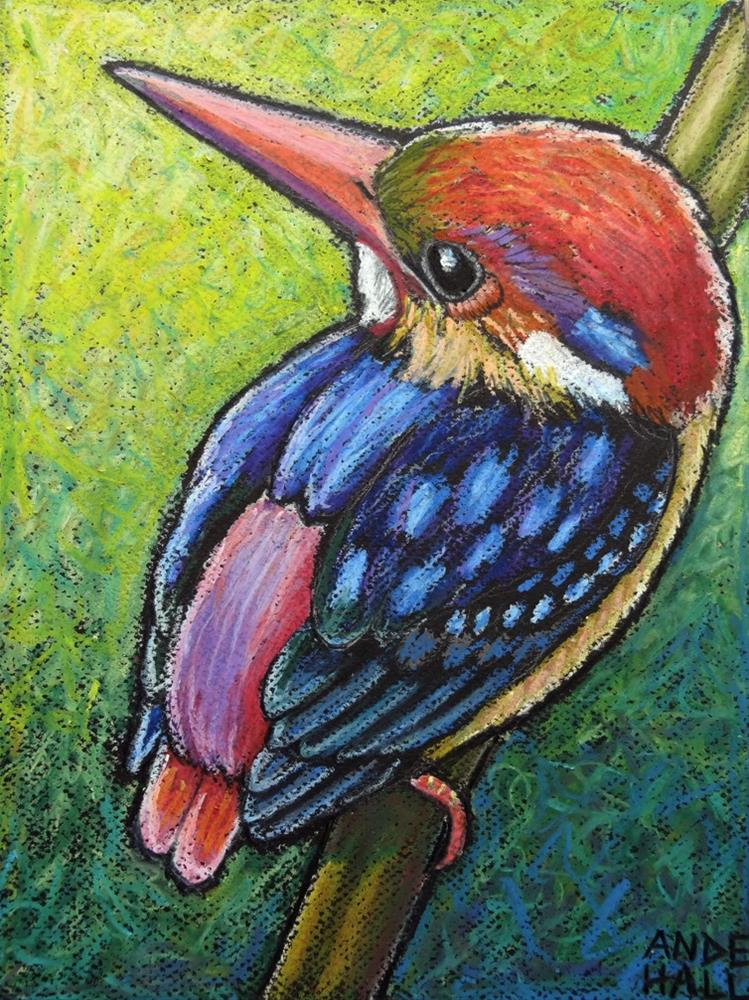 """Oriental Dwarf Kingfisher"" original fine art by Ande Hall"