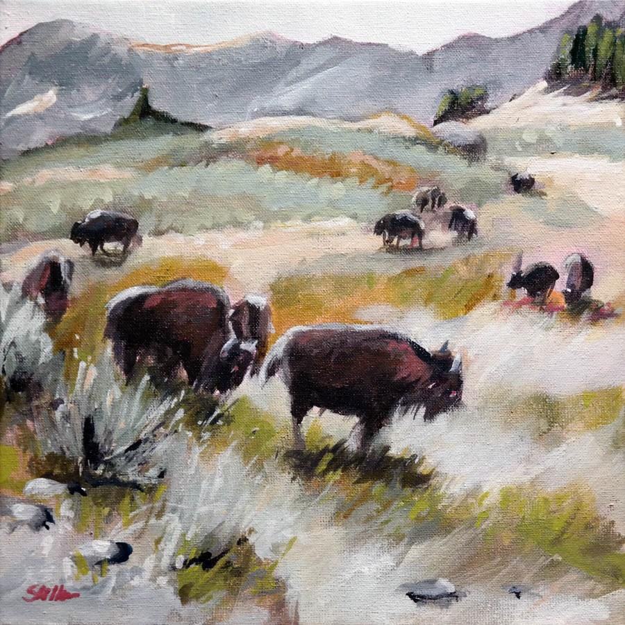 """""""1535 Vast Prairie"""" original fine art by Dietmar Stiller"""