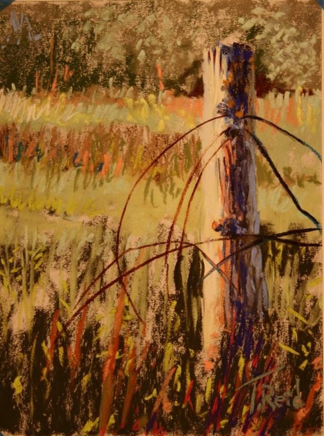 """""""Fence Down"""" original fine art by Toby Reid"""