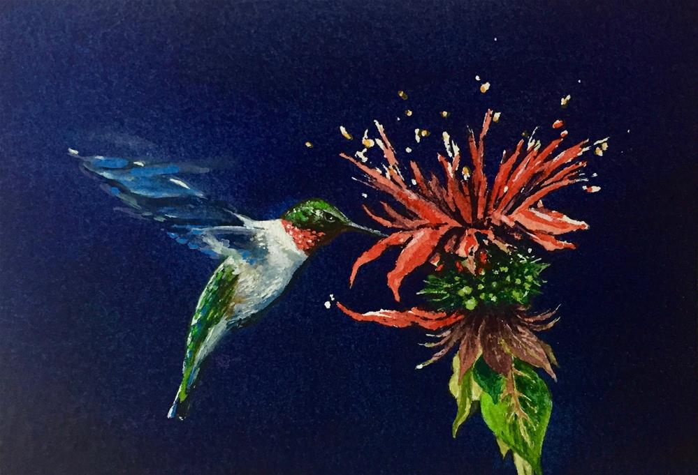 """""""Ruby Throated Hummingbird at Bee Balm"""" original fine art by Laurie Maher"""