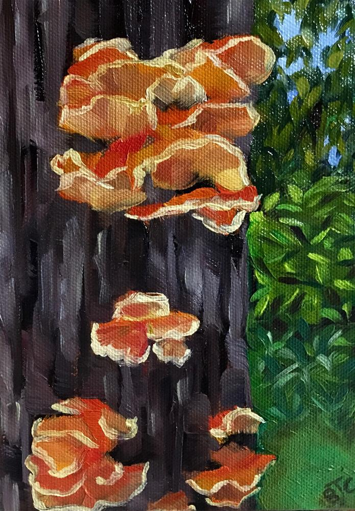 """""""Fungus Fair 2016"""" original fine art by Bobbie Cook"""