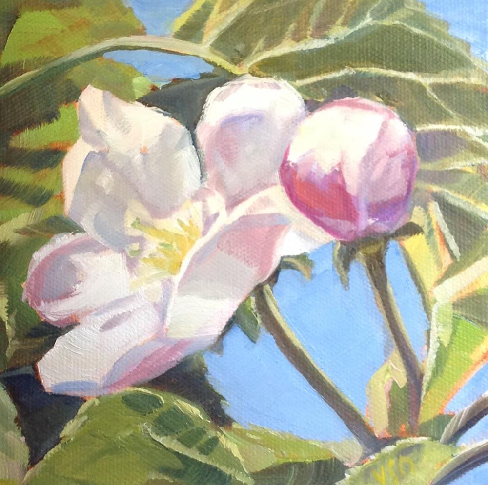 """Apple Blossoms I"" original fine art by Valerie Orlemann"