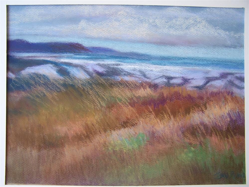 """Nova Scotia Shoreline"" original fine art by Joan Reive"