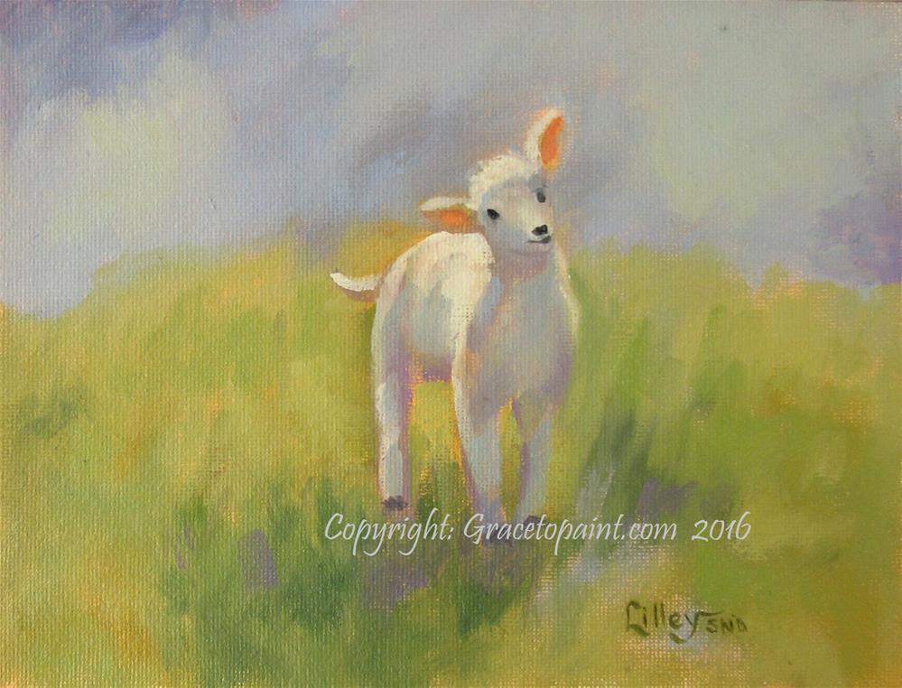 """Lamb #14"" original fine art by Maresa Lilley"