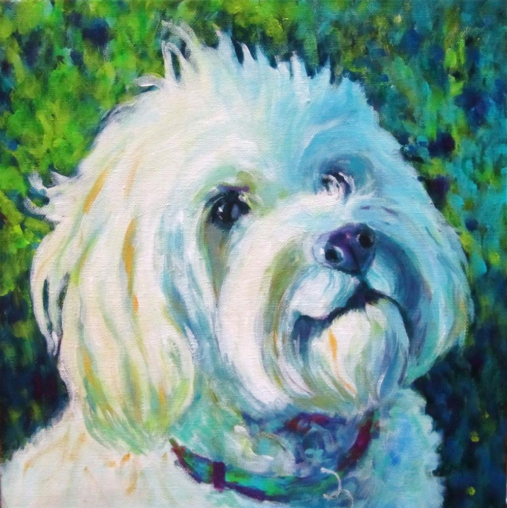 """Taggs"" original fine art by Patricia MacDonald"