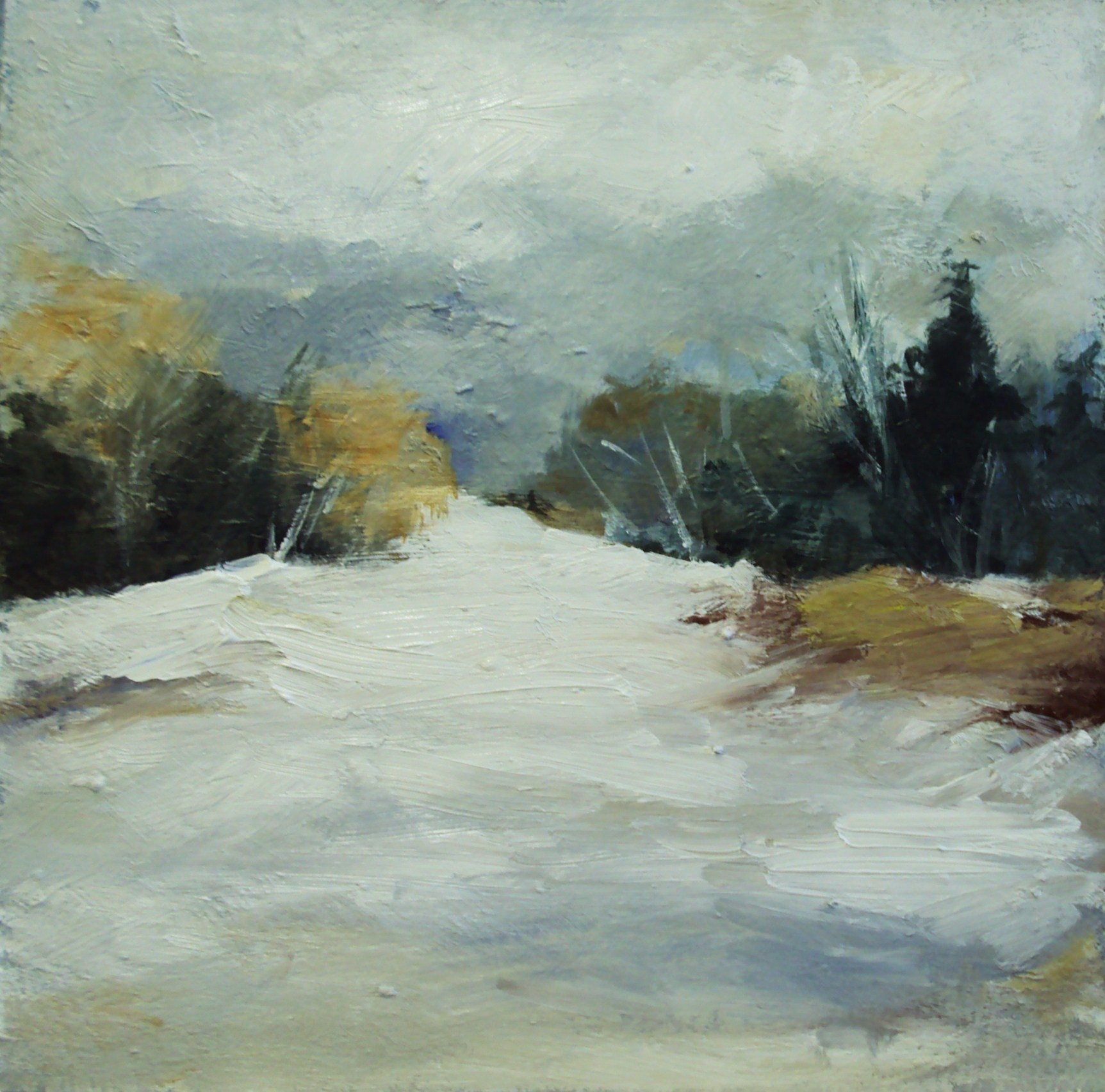 """Snow"" original fine art by Parastoo Ganjei"