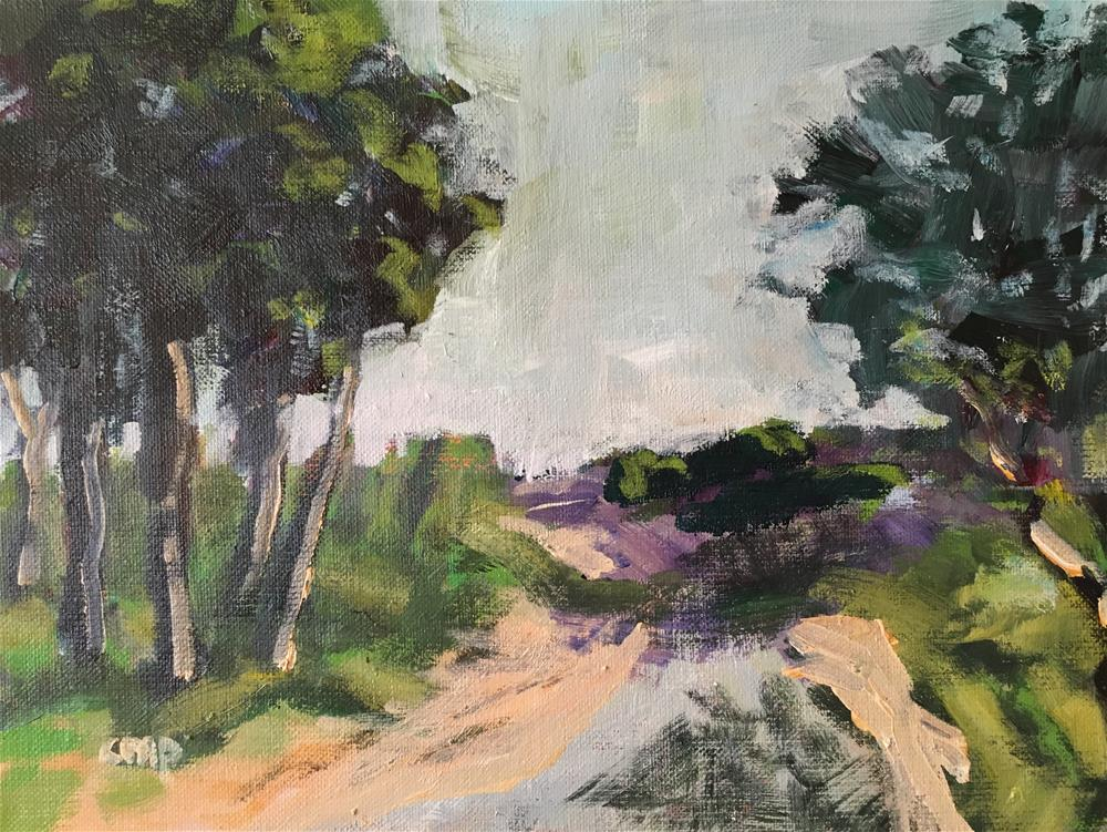 """Landscape New South Wales"" original fine art by Christine Parker"