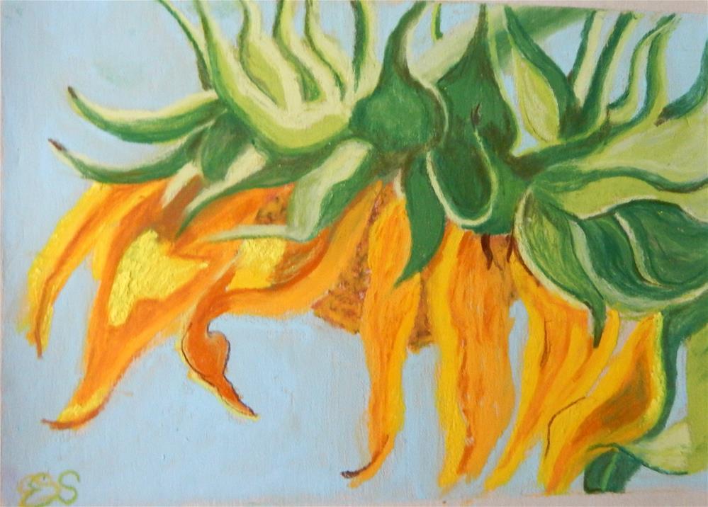 """""""Sunflower"""" original fine art by Elaine Shortall"""