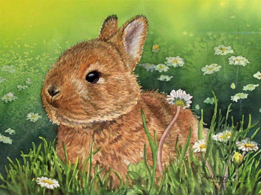 """""""Baby Bunny"""" original fine art by Deb Watson"""