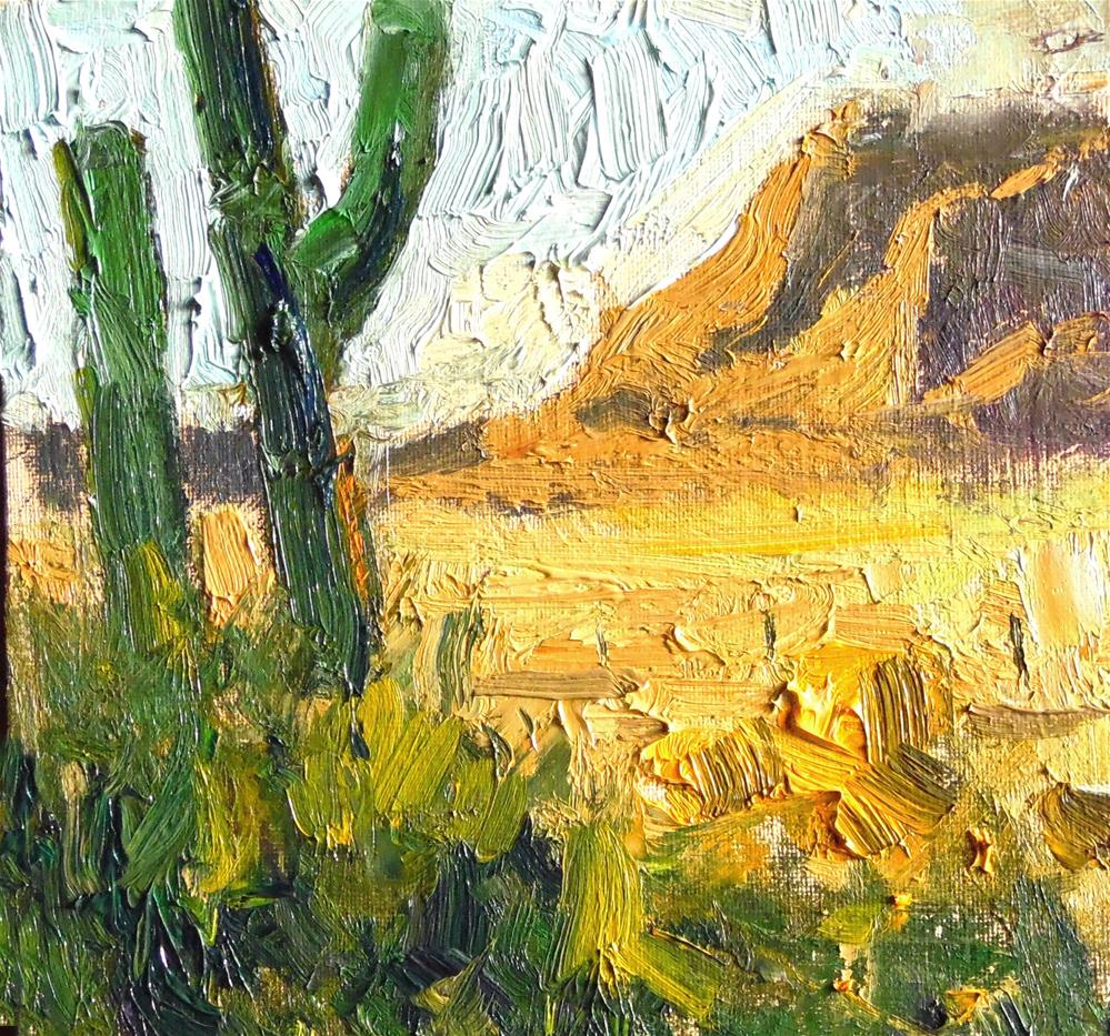 """Evening Light Sonoran Desert "" original fine art by Michael Clark"