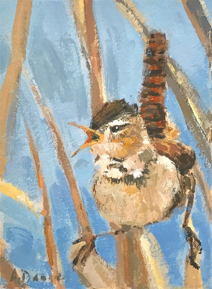"""Marsh Wren Calling"" original fine art by Andrew Daniel"