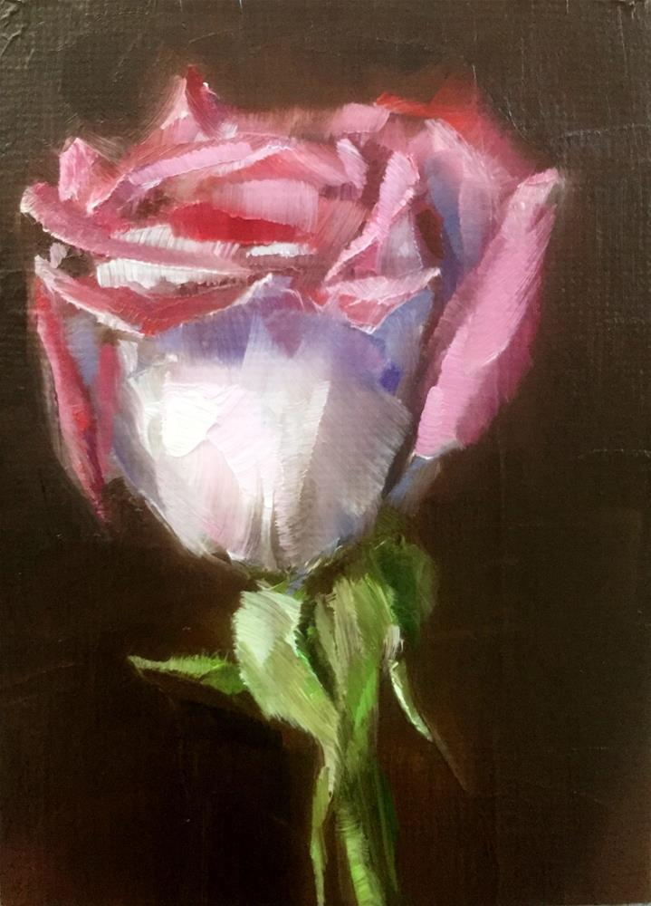 """Rose Study"" original fine art by Gary Bruton"