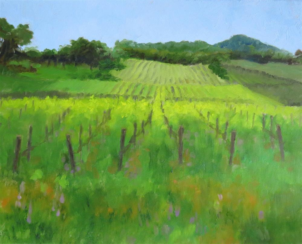 """Vineyard View"" original fine art by Pam Holnback"