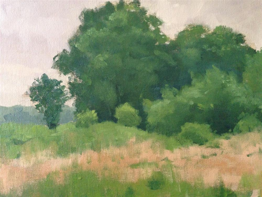 """Bruce Vento Nature Sanctuary"" original fine art by Patty Voje"