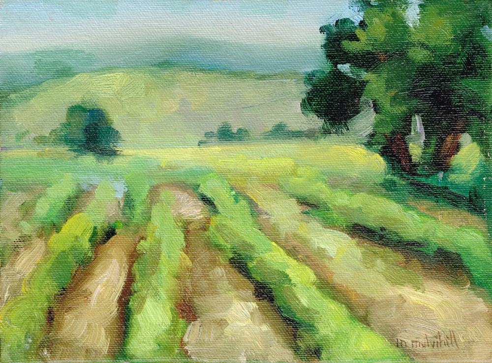 """August Field, Kelseyville"" original fine art by Mary Mulvihill"