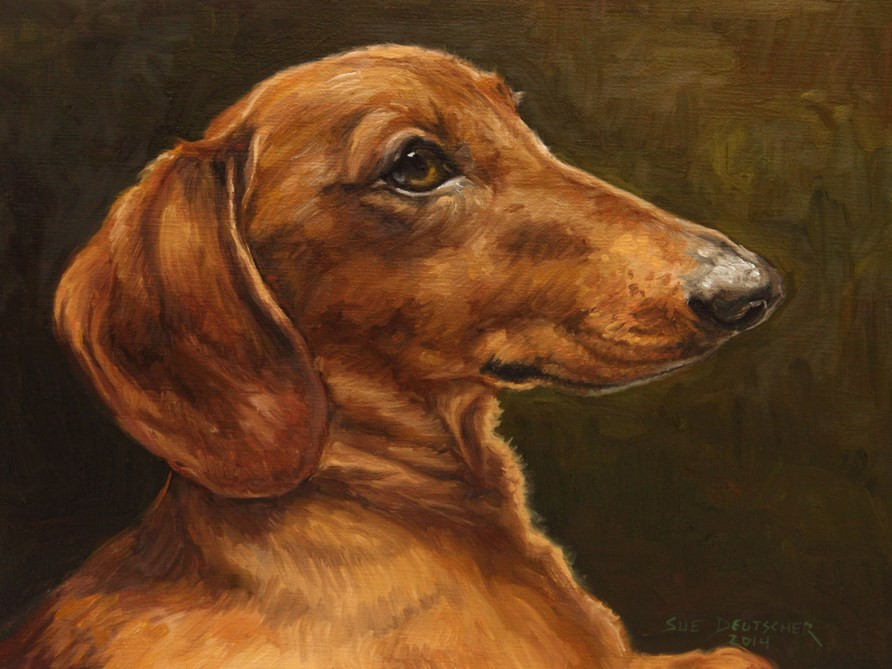 """Finnegan"" original fine art by Sue Deutscher"