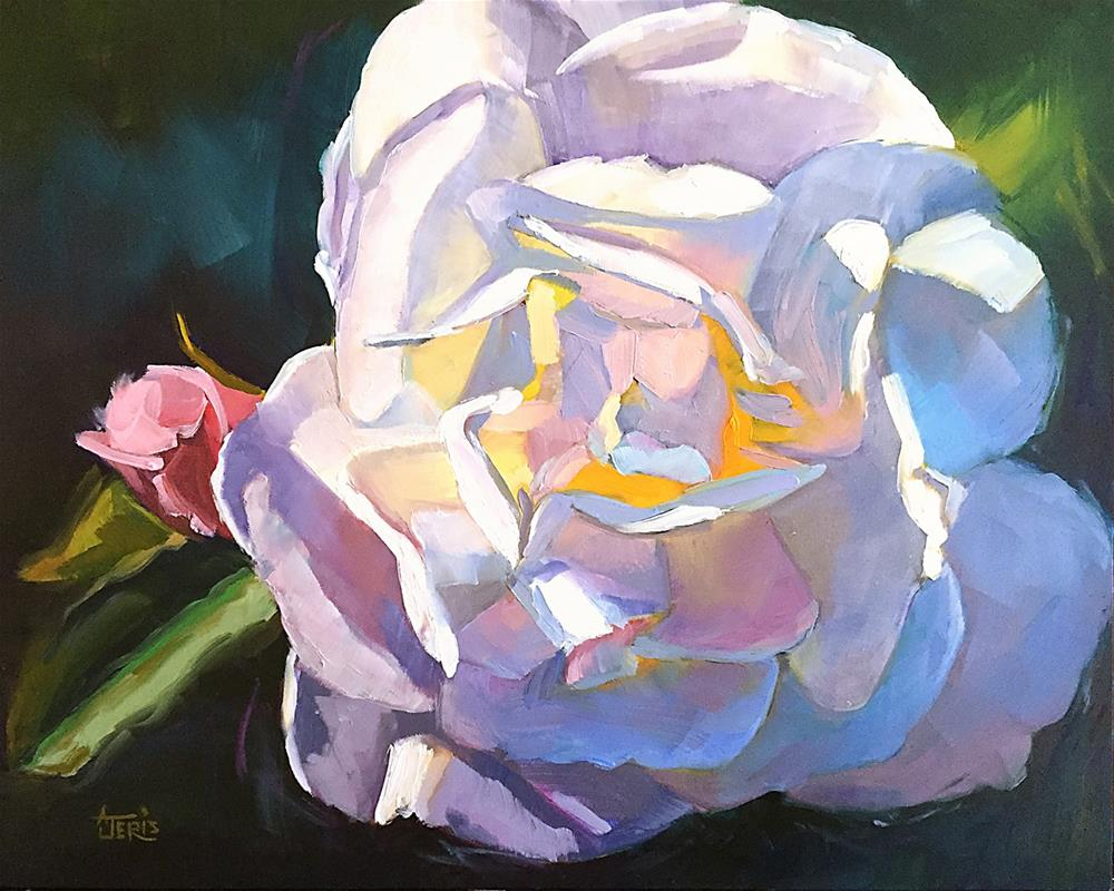 """White Rose"" original fine art by Andrea Jeris"