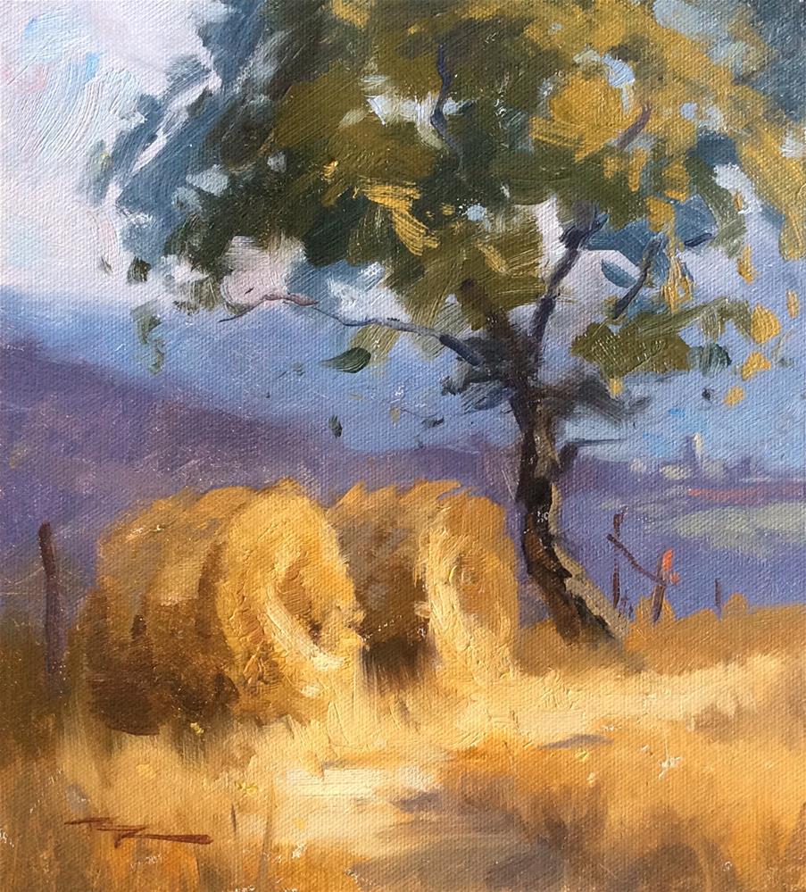 """Haybales"" original fine art by Richard Robinson"
