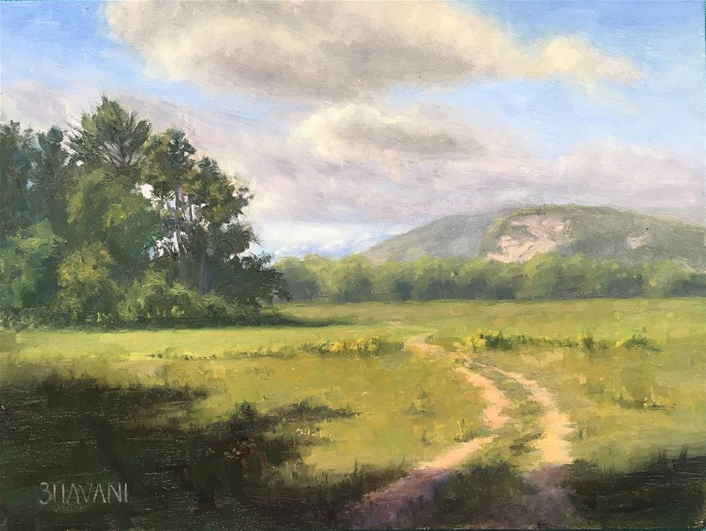 """""""The meadow"""" original fine art by Bhavani Krishnan"""