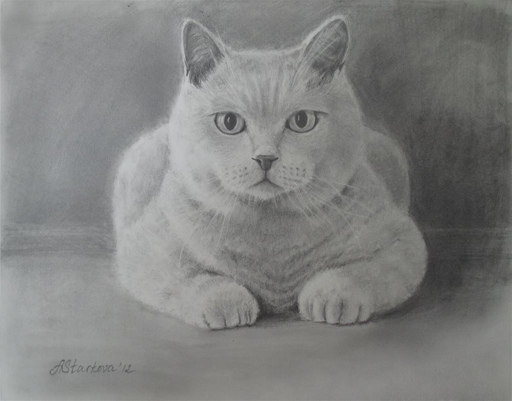 """My cat portrait"" original fine art by Anna Starkova"