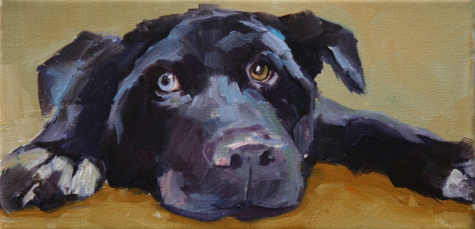 """sampson"" original fine art by Carol Carmichael"