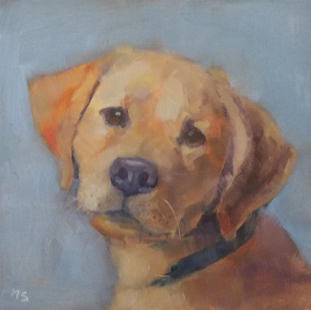 """Yellow Lab"" original fine art by Nancy  Spinadel"