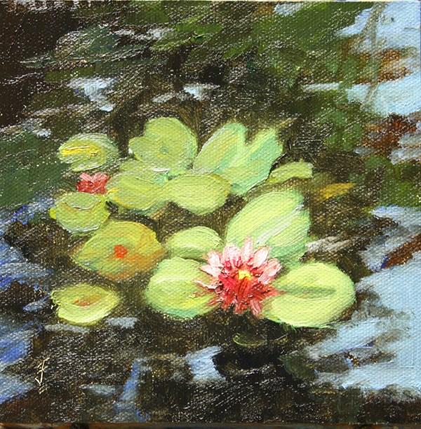 """Lily Pond"" original fine art by Jane Frederick"