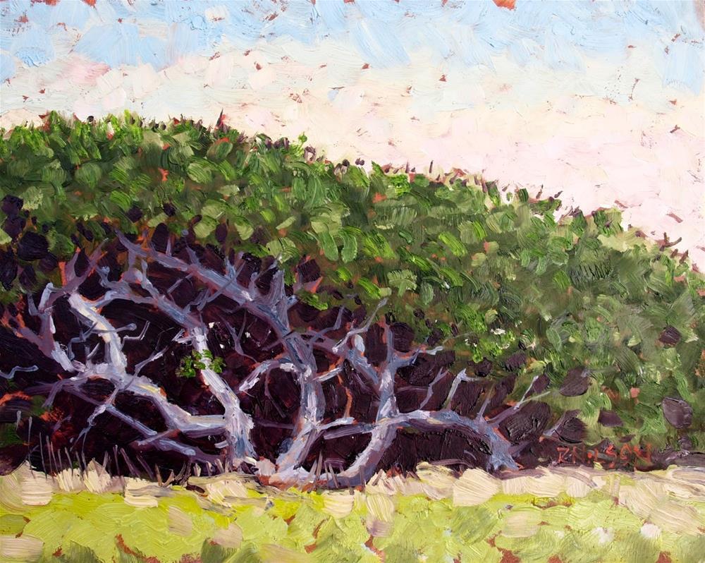 """Twisted Oaks"" original fine art by Rick Nilson"