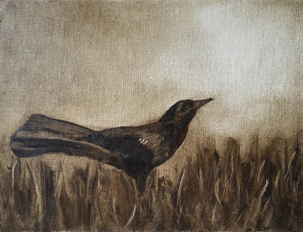 """Challenge - Bird 1"" original fine art by Van DeGoede"