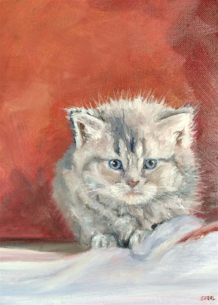 """Furball"" original fine art by Cheri Sperl"