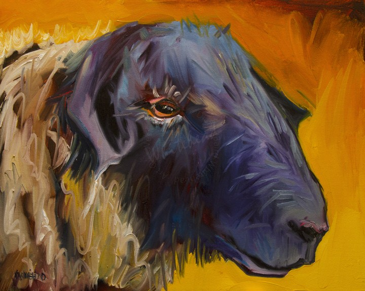 """ARTOUTWEST SHEEP LAMB ART DIANE WHITEHEAD Fine art oil painting"" original fine art by Diane Whitehead"