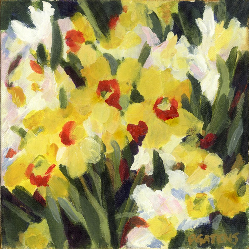 """Daffodils Afield"" original fine art by Pamela Gatens"