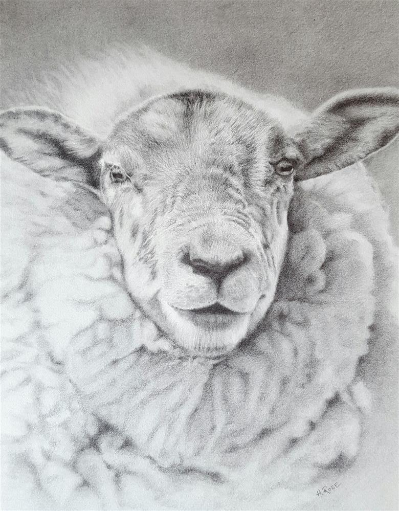 """O'Shannon the Sheep"" original fine art by Heidi Rose"