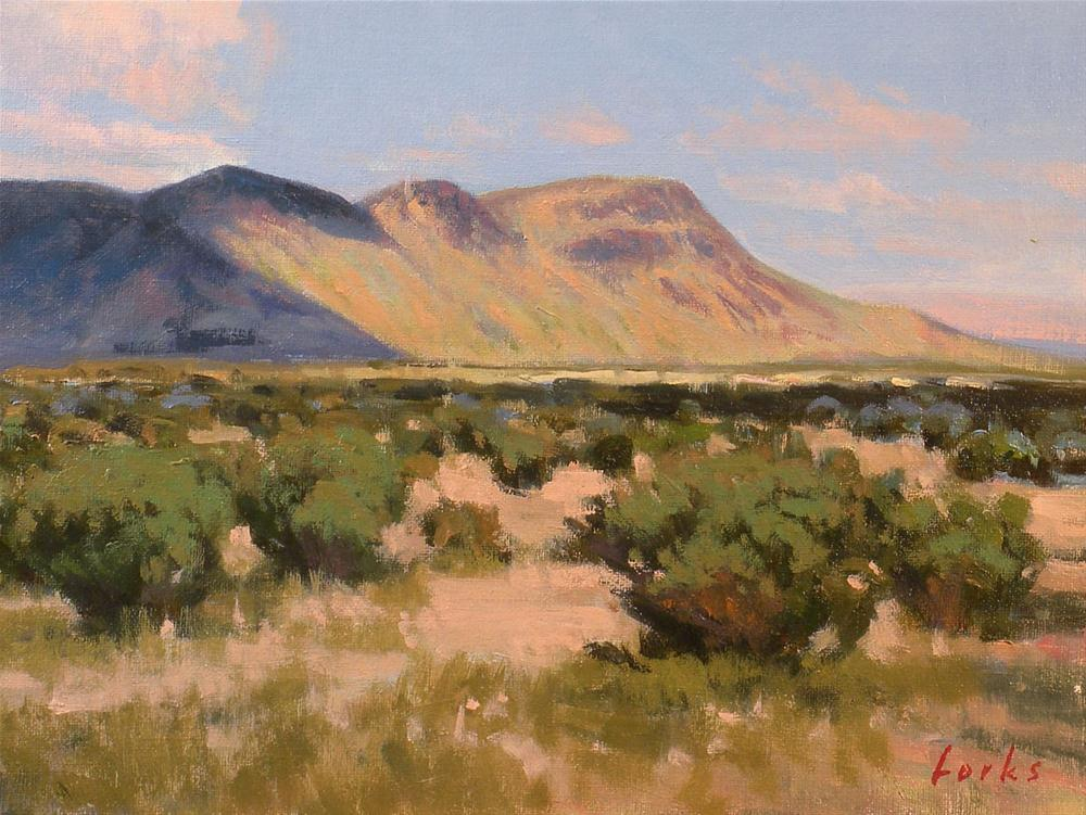"""Desert View"" original fine art by David Forks"