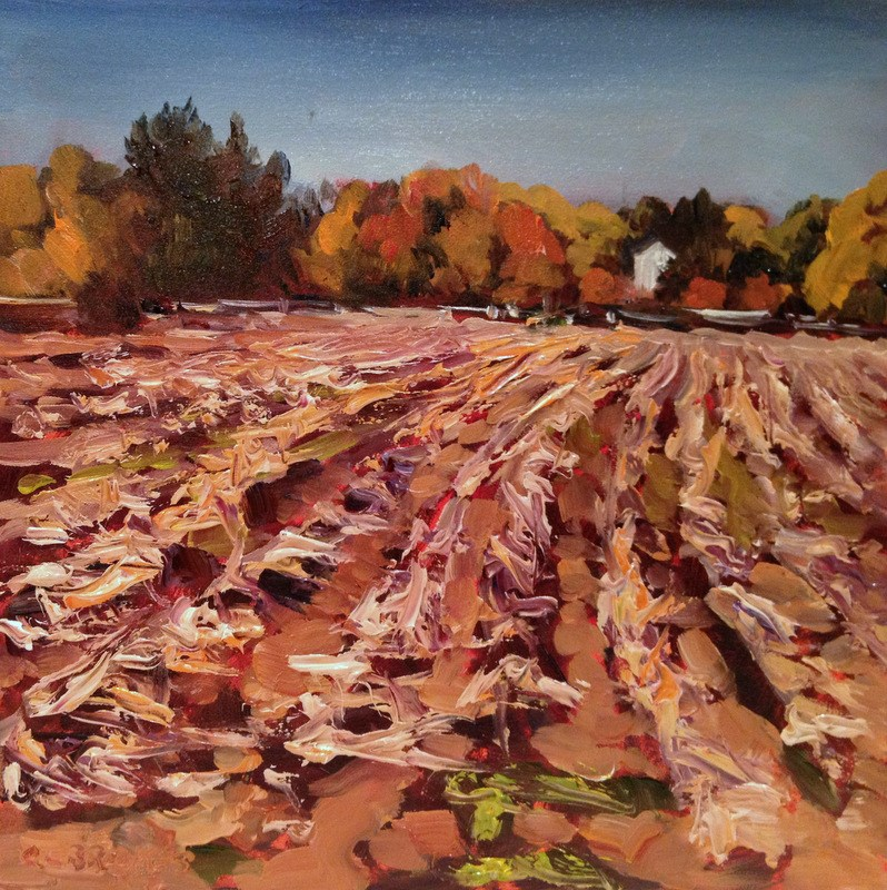 """After the Corn II, Day 36"" original fine art by Claudia L Brookes"