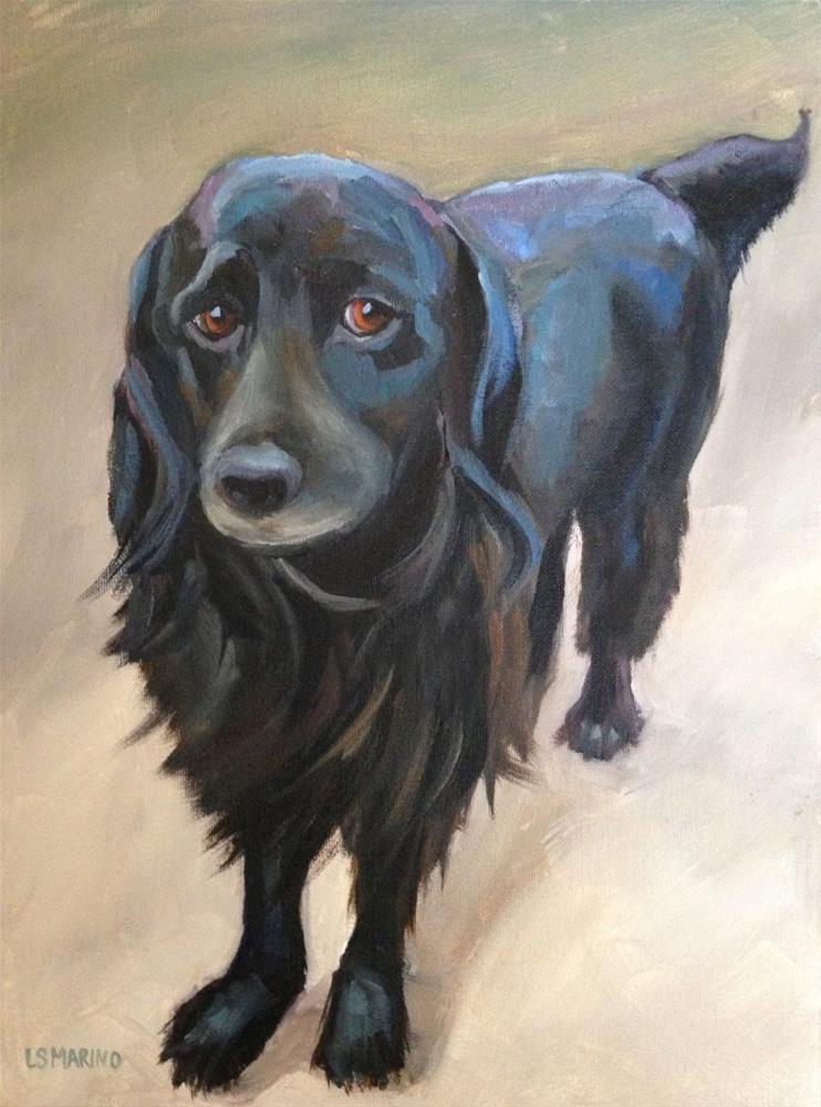 """Sargent - Pet Portrait"" original fine art by Linda Marino"