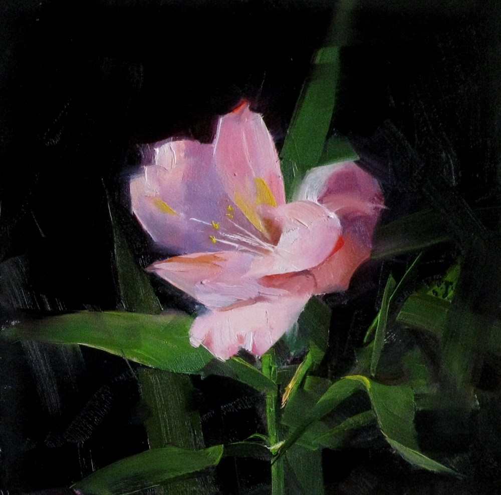 """Pink Lily Study 1"" original fine art by Qiang Huang"