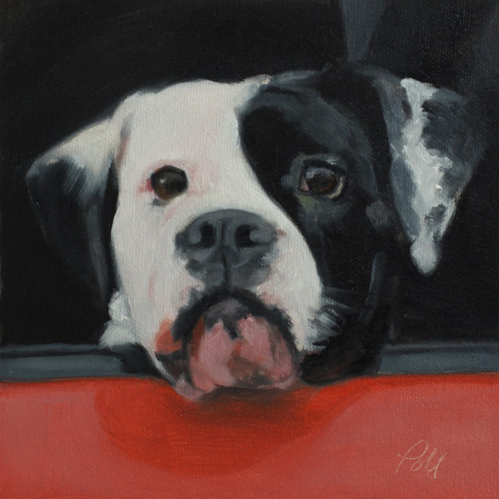 """Dogface"" original fine art by Pamela Poll"
