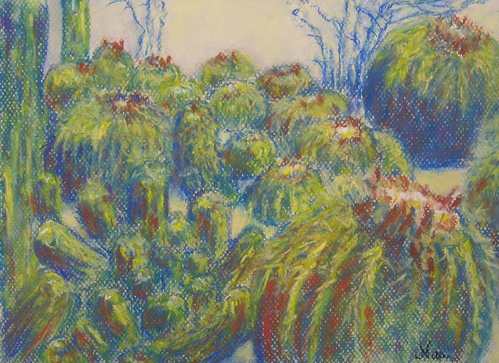 """Cactus Patch"" original fine art by Niki Hilsabeck"