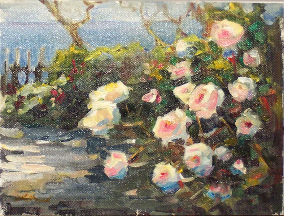"""Island Rose Garden,landscape,oil on canvas,8x10,priceNFS"" original fine art by Joy Olney"