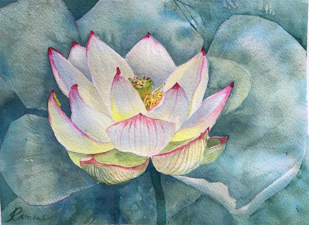 """Lotus flower"" original fine art by Natasha Ramras"