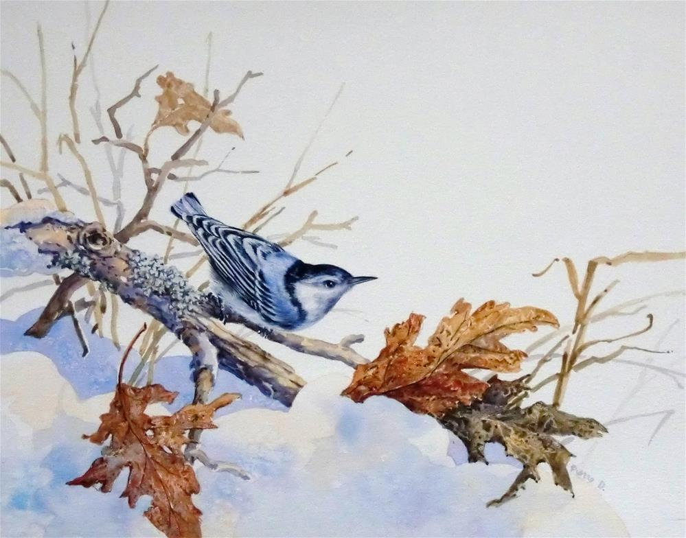 """White-Breasted Nuthatch"" original fine art by Jean Pierre DeBernay"