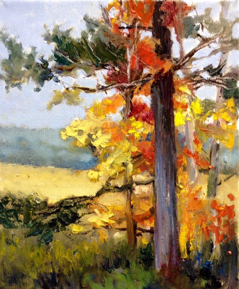 """""""Fall Parade"""" original fine art by Cathy Boyd"""