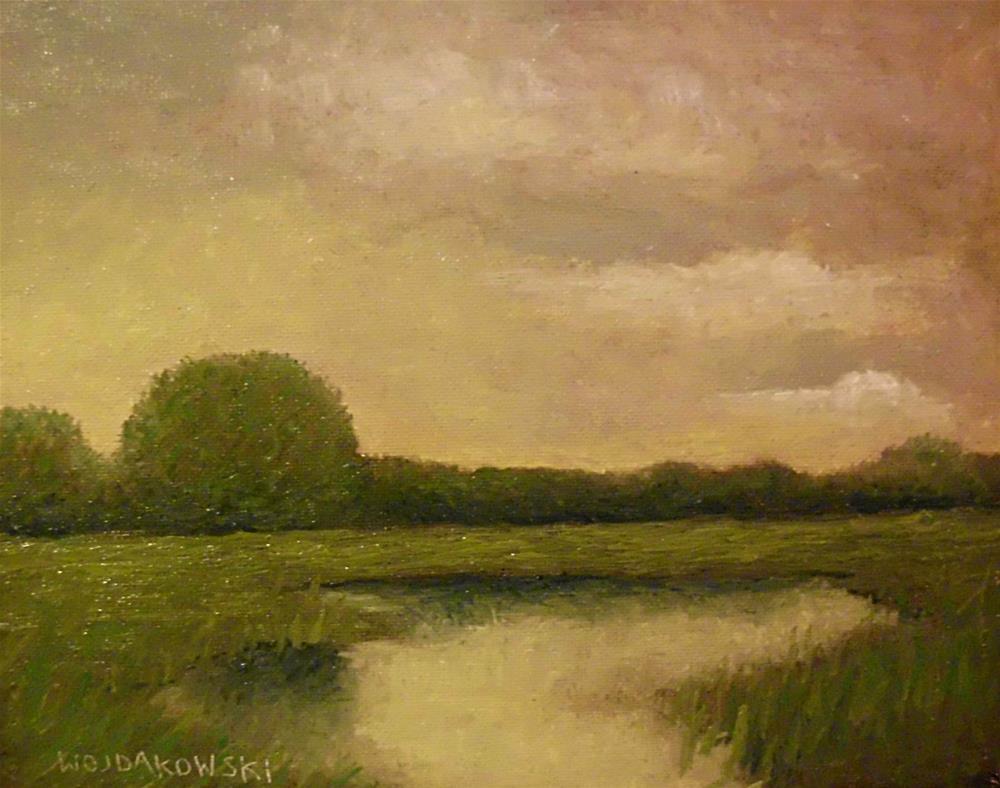 """Evening Marsh"" original fine art by Joe Wojdakowski"